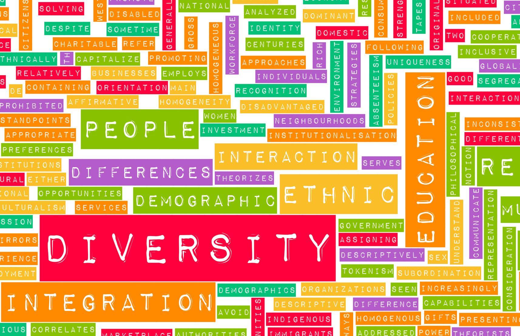 Diversity, social interaction and solidarity